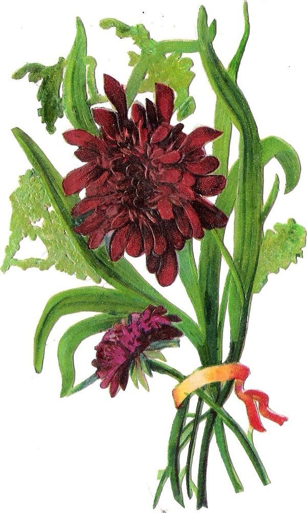 Oblaten Glanzbild scrap die cut chromo  Blume flower 14 cm
