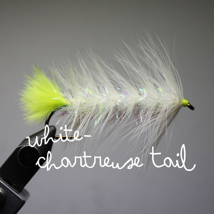 Best Trout Fly Fishing Flies Natural Color Which