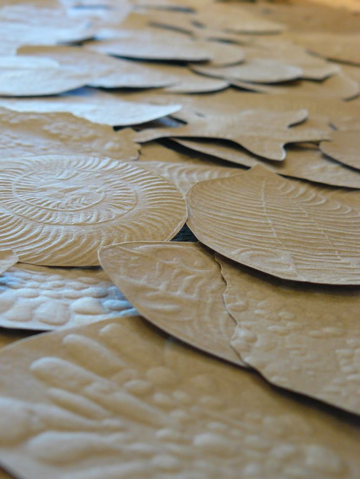 Bibliophilia: Punctuated Equilibrium  Embossed fossils on brown kraft paper