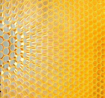 Biomimicry In Action Panelite Clearshade Insulating Glass