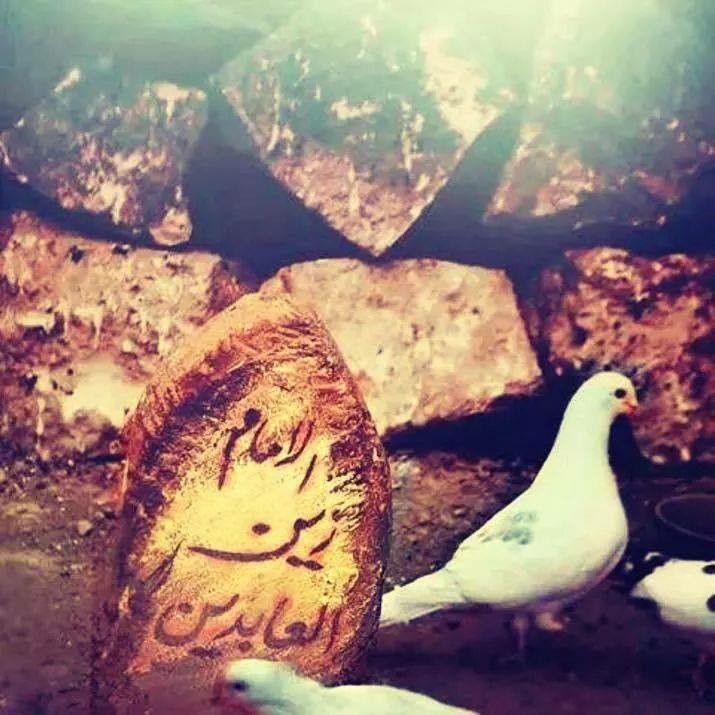 - Syedus Sajedeen (a.s) !! Ashaam Ashaam Ashaam !  sending  condolence to Imam Al-Hujjat(a.s) , Imam Al-Hussain (a.s) and members of Alulbayt(a.s) on the martyrdom of Imam Zaynul Abedeen(a.s
