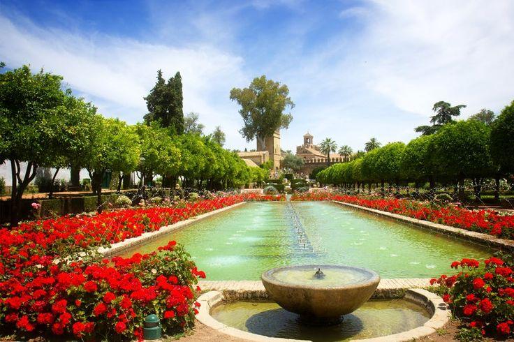 Klaar voor de Ronde van Andalusië? ¡Vámonos! Op naar de zuiderse sfeer waar alles op't gemak z'n gangetje gaat en je enkel hoeft te denken aan sangria, tapas en in welk pittoresk plekje je nu eens zal stoppen. Het wordt een reis vol diversiteit op vlak van cultuur, geschiedenis, sfeer en keuken. Je gaat van de pure Andalusische sfeer in Jerez naar de grote havenstad Algeciras, het imposante Granada in de bergen, het mysterieuze Córdoba en het rijke Sevilla. Wees er maar zeker van dat ...