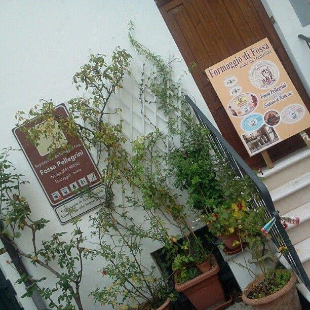 Il Museo del Formaggio di Fossa Pellegrini a Sogliano - Instagram by @alecata68