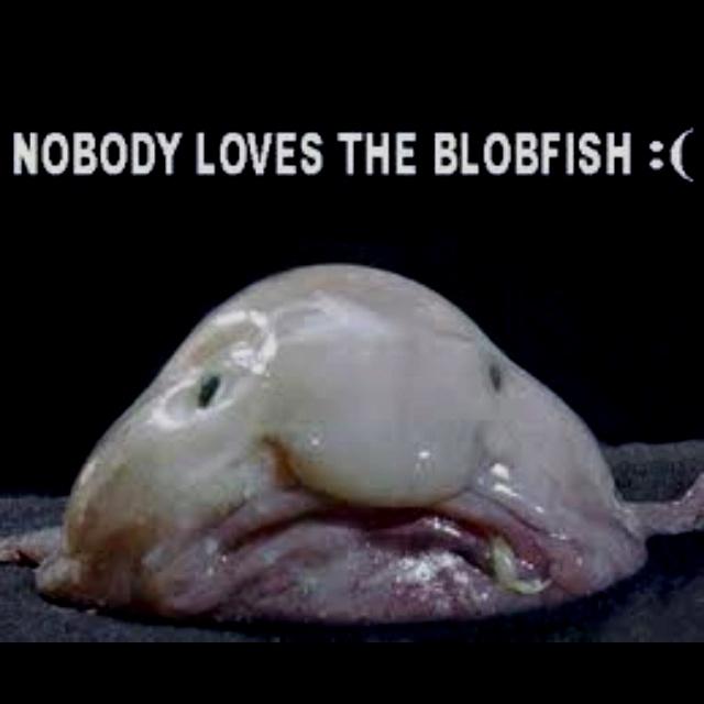 Blobfish Men In Black 3