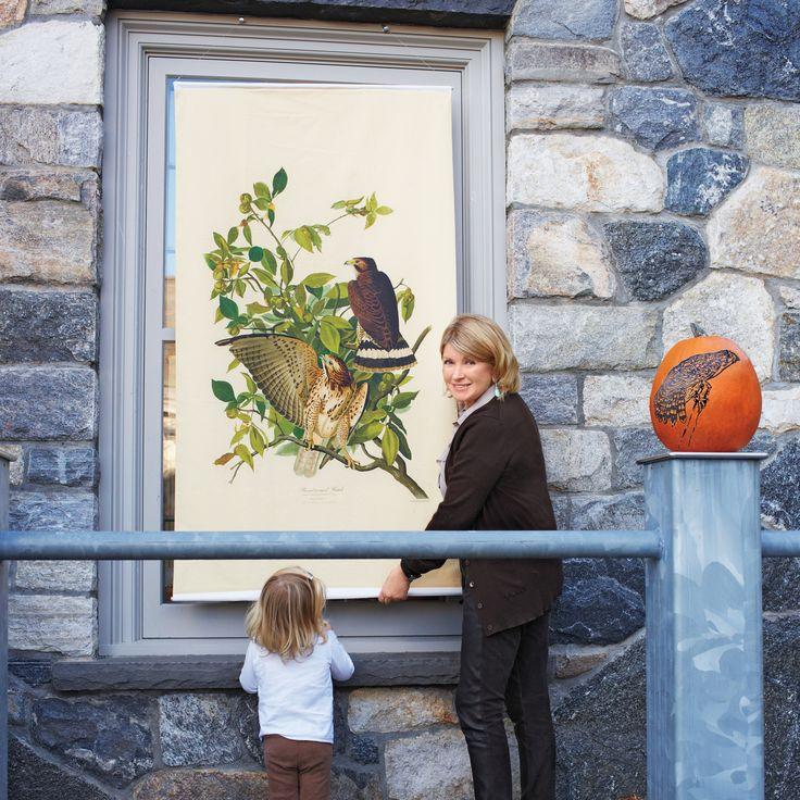 Celebrating a century of the Bedford Audubon Society.