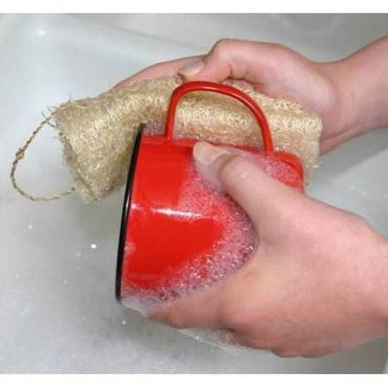 Saviez-vous qu'il est possible de faire pousser des éponges dans le jardin ? Oui, oui des éponges pour faire la vaisselle et laver le sol ! Tout ce dont vous avez besoin, c'est de graines de luff...