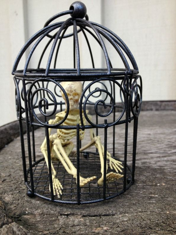 craft tutorial jailbird skeleton halloween decoration and 100 more diy halloween ideas