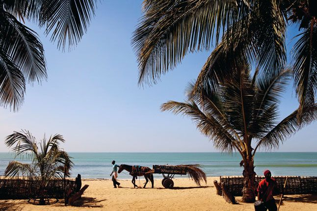Senegal, Africa | Best winter sun holidays 2015 (Condé Nast Traveller) Flight time: 10 hours from London - When to go: November to May - It may not the obvious choice for a beach holiday, but all the better for it: Senegal, in West Africa, has some beautiful golden sands, fantastic surf, great music and delta wildlife. Go for a holiday of life-changing experiences