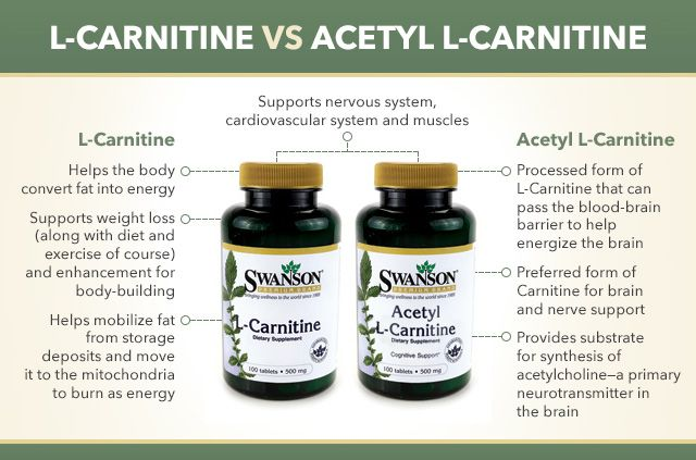 What is the Difference Between L-Carnitine and Acetyl L-Carnitine?
