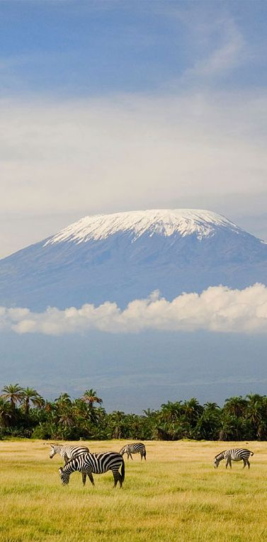 Can you imagine getting to see Mount Kilimanjaro every day? Absolutely amazing! #Tanzania