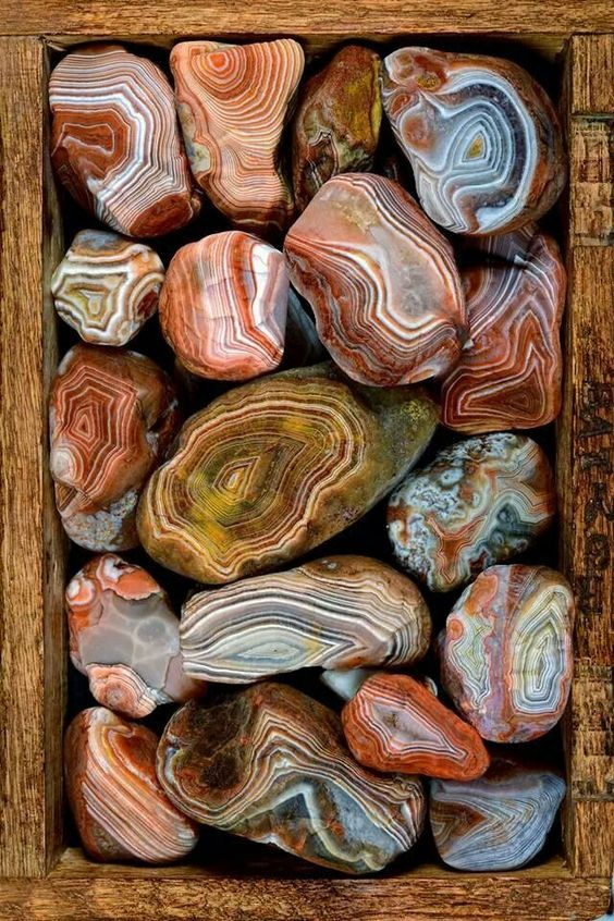 The MN State gem: Beautiful Lake Superior Agates - found on both north (MN) and south (WI) shores of Lake Superior. - Agates are semi precious stones so common on Lake Superior beaches no one pays much attention.
