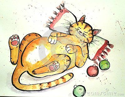 Cat on a pillow