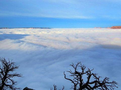 Wielki Kanion wypełniony chmurami. To robi wrażenie! - Wiadomości