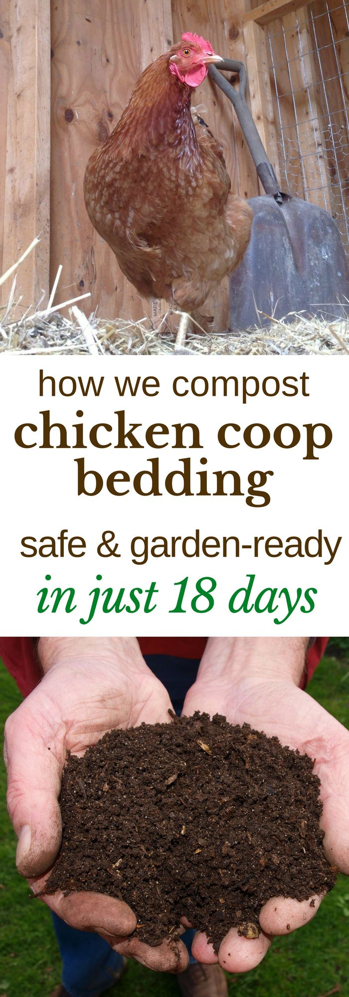 Here's how we turn the deep litter from our chicken coop into safe, garden-ready compost, in just 18 days. | Posted by: SurvivalofthePrepped.com