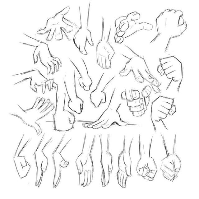 Hand studies #sketchbookpro #sketch #drawing #anatomy #study #hands #fist