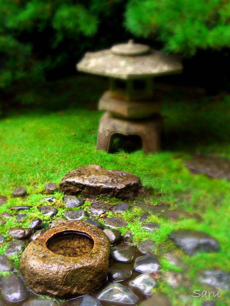 San Francisco Japanese Tea Garden, Japanese Tea Garden Water Basin