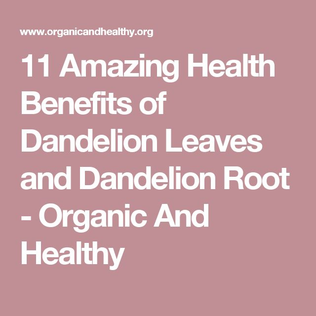 11 Amazing Health Benefits of Dandelion Leaves and Dandelion Root - Organic And Healthy