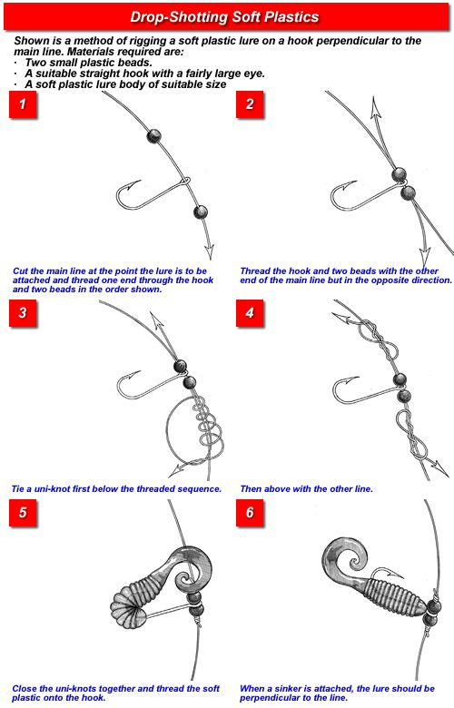 25 best ideas about drop shot fishing on pinterest drop for Bass fishing rigs
