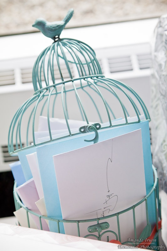 We did end up finding one of those robin's egg birdcages on Etsy! It worked very well... and now I have no idea what to do with it, haha. Backyard maybe?
