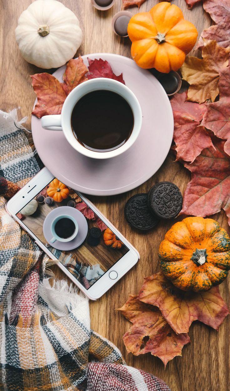 Wie kommt man mit Herbst-Blog-Post-Ideen, um Ihren Verkehr in diesem Herbst zu explodieren! + Freie Liste der Schlüsselwörter