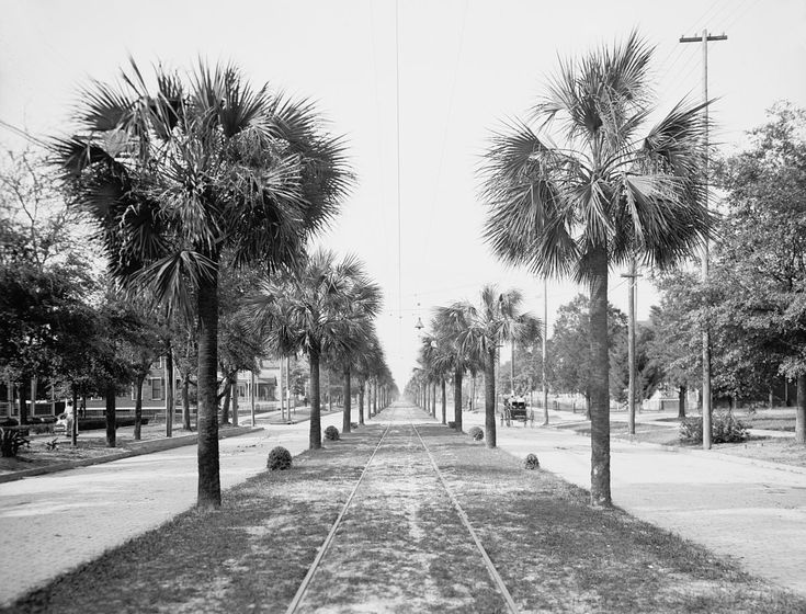 Old Florida Photos Bing Florida Old Florida