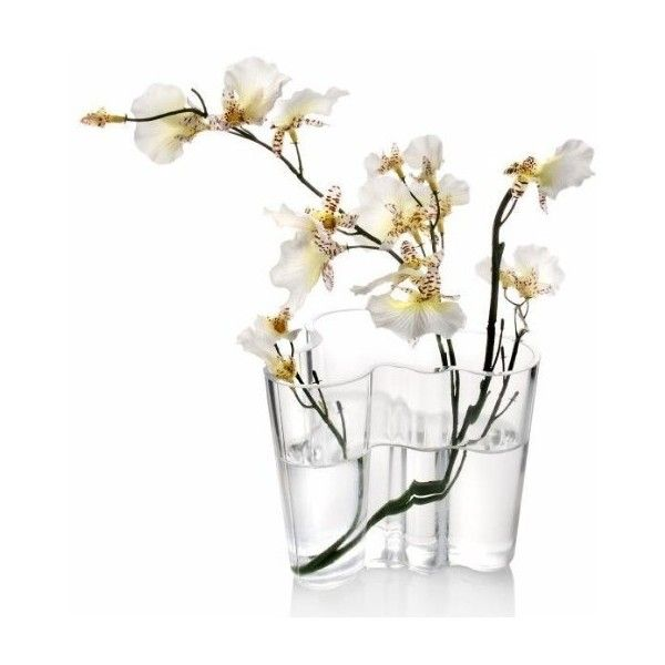 """Iittala Aalto Vase 6.25"""" Clear ($175) ❤ liked on Polyvore featuring home, home…"""