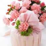 Bunch of Pink Carnations