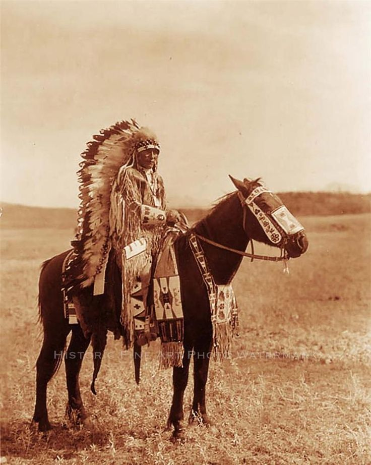 Assiniboine Indian Chief Hector Vintage Photo Native