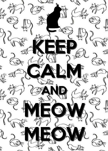Keep calm meow