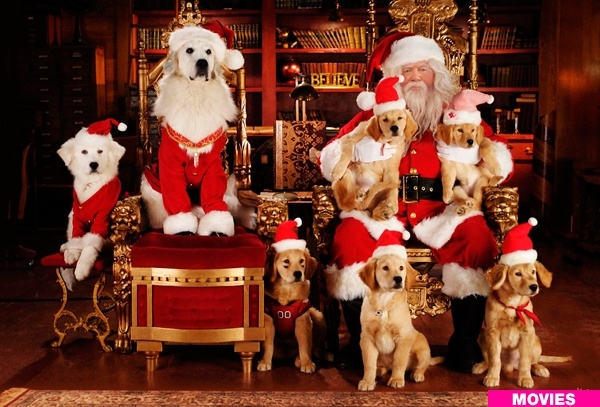 cute christmas puppies :)