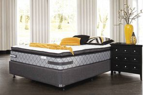 Vision Plush Bed by Sealy Posturepedic