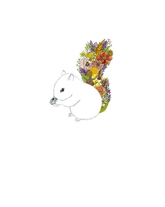 Squirrel, flowers  8 x 10 archival print    It doesnt get much cuter than a wee squirrel with a round belly nibbling on an acorn!    This special