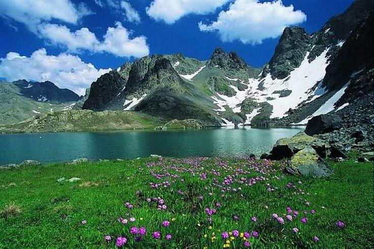 Ülkemizdeki Milli Parklar ,bol görselli,Rize - Kaçkar Dağları Milli Parkı    Yeri: Rize ili,Çamlıhemşin ilçesi sınırları içerisinde yer almaktadır.    Ulaşım: Milli Park alanına,Çamlıhemşin ilçesinden 16 km.lik bir karayolu ile ulaşılmaktadır.