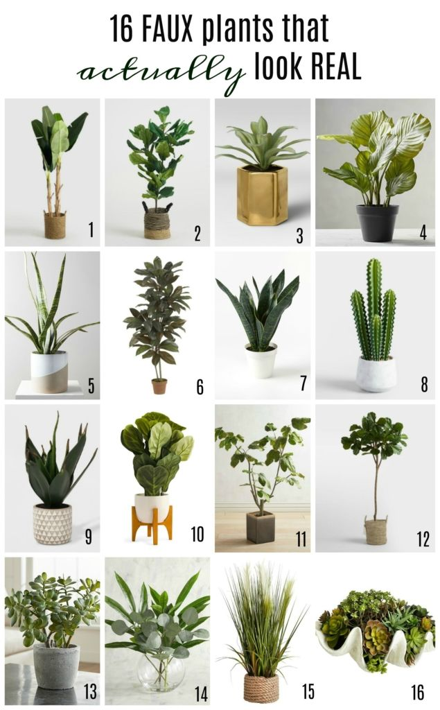 16 Faux Plants That Actually Look Real