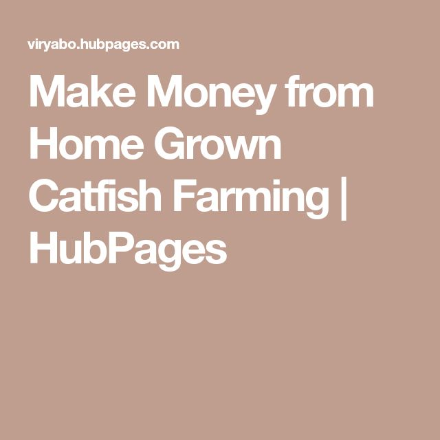 Make Money from Home Grown Catfish Farming | HubPages