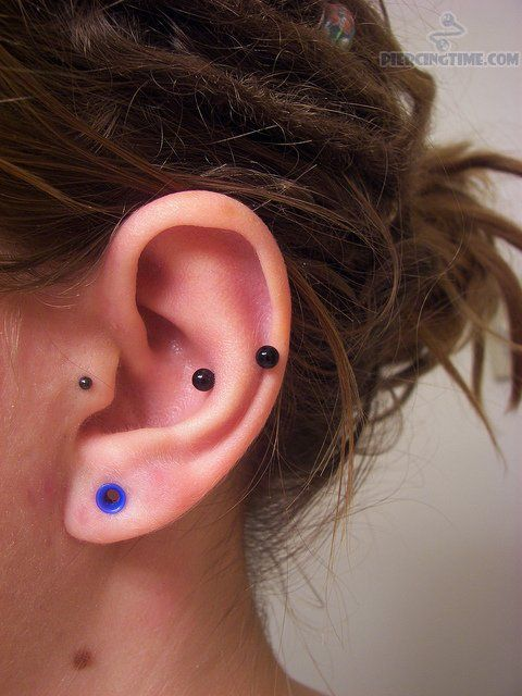 snug piercings | pictures attractive snug piercing and tragus piercing snug piercing ...