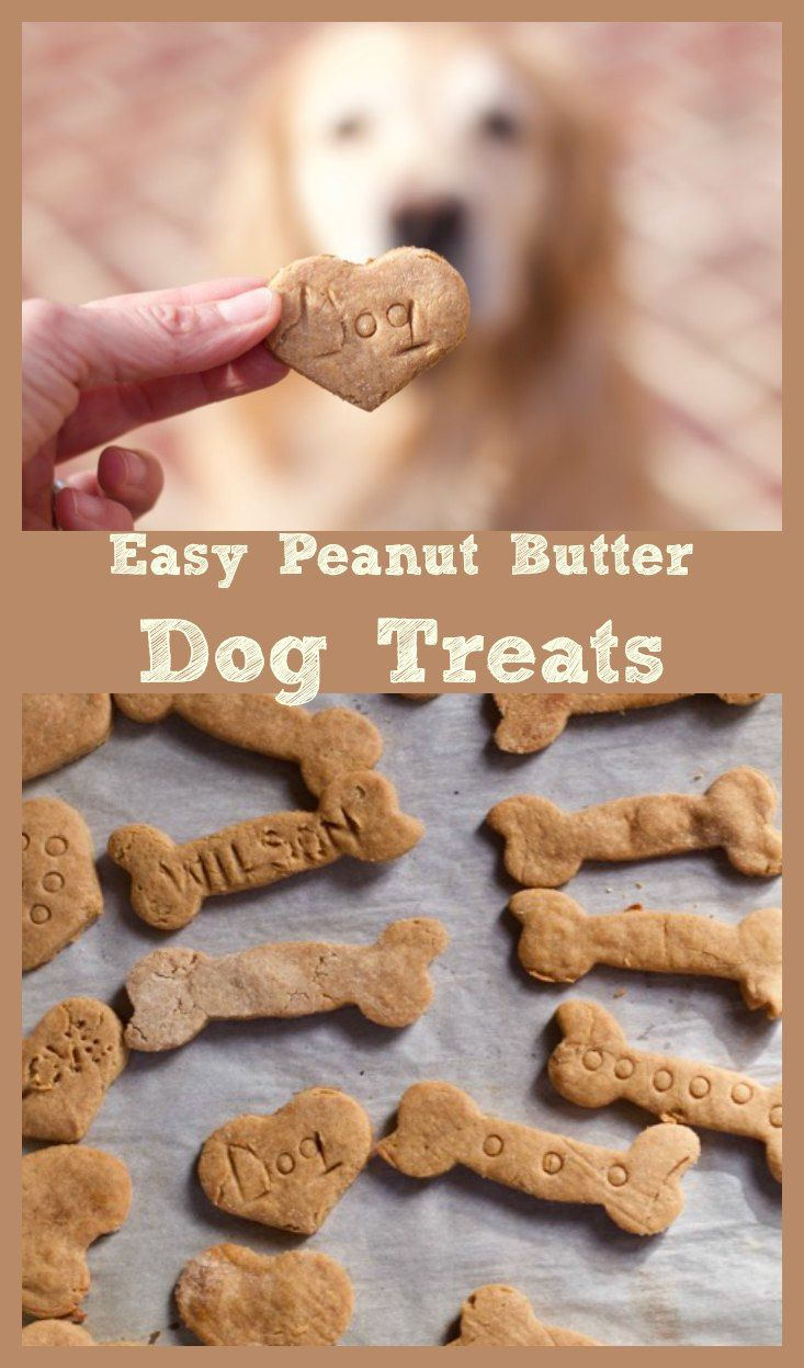 Best 4 Ingredient Peanut Butter Dog Treats Recipe Dog Treats