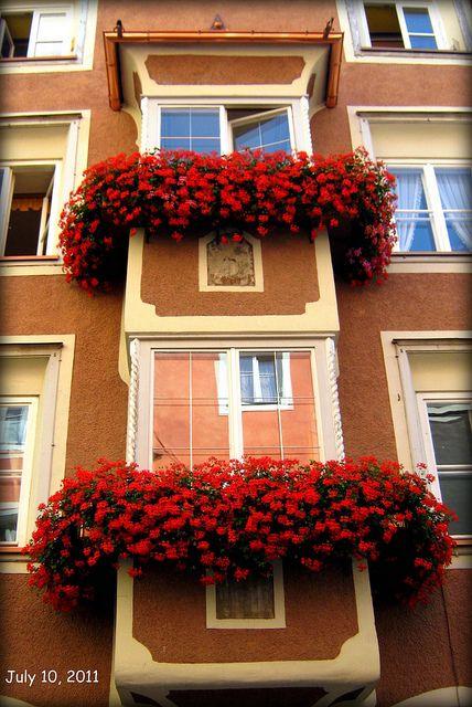 14 fantastiche immagini su varandas e terra os em flor su - Fioriere per davanzale finestra ...