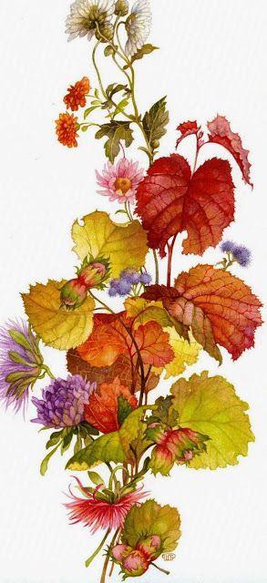 7 of Arts: Illustrations with flowers, fruits and birds. Artist Olga Jonaitis