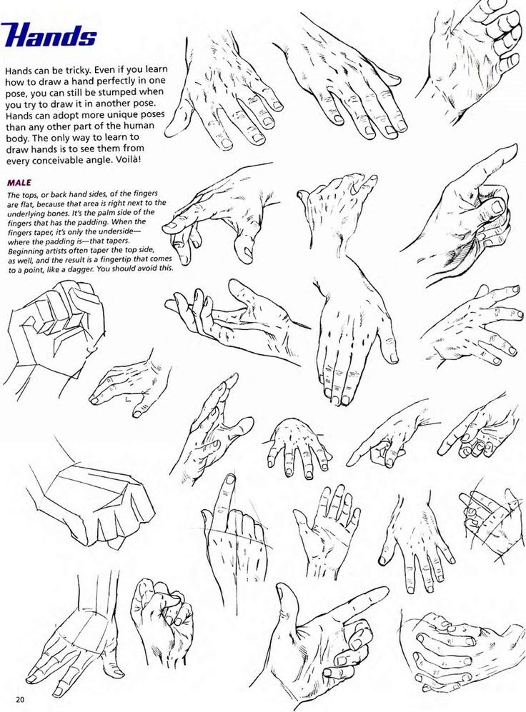 Character Design Hands : Best hands reference images on pinterest hand