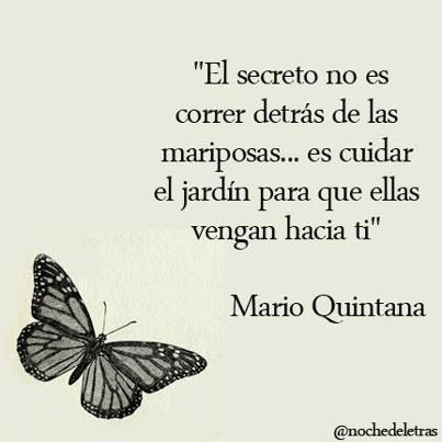 """"""" El secreto no es correr detras de las mariposas, es cuidar el jardin para que ellas vengan a ti """""""