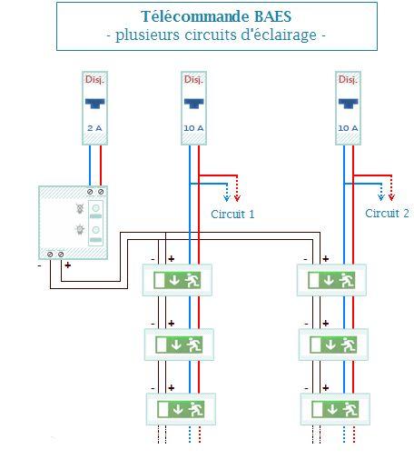 Sch ma de branchement le bloc de secours plusieurs circuits electric pinterest bloc de - Un ou une thermos ...