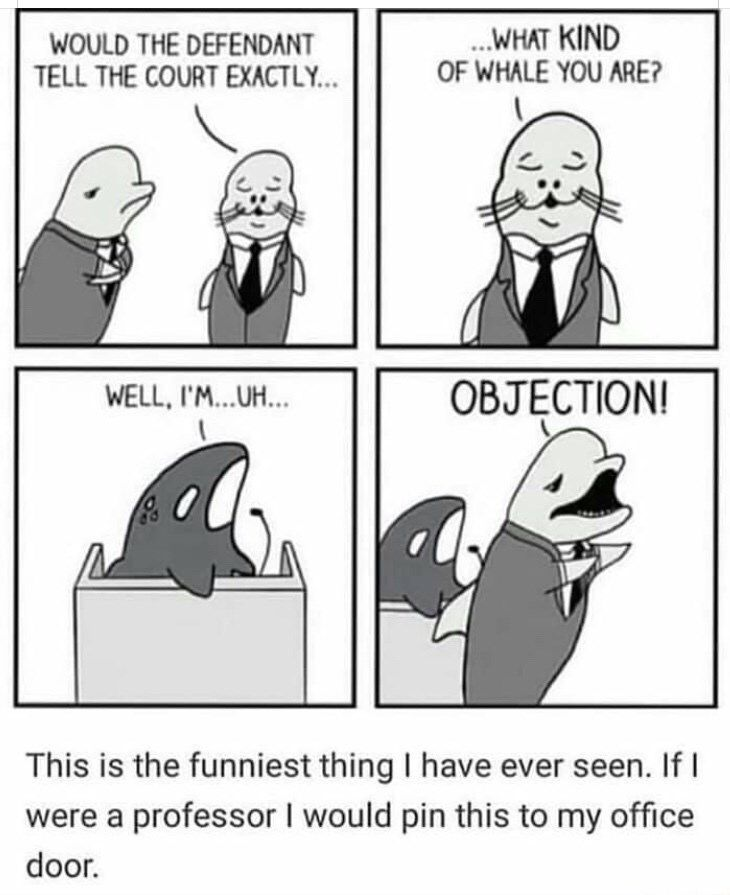 A Crapload Of Memes & Comics Just Because (33 Funny Pics) A Crapload Of Memes & … – home-dekor