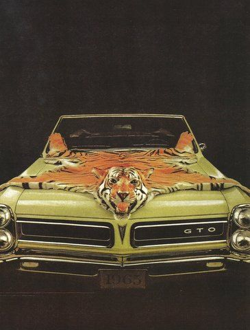 Vintage 1965 Pontiac GTO car fridge magnet Tiger Skin by Vividiom, $3.50