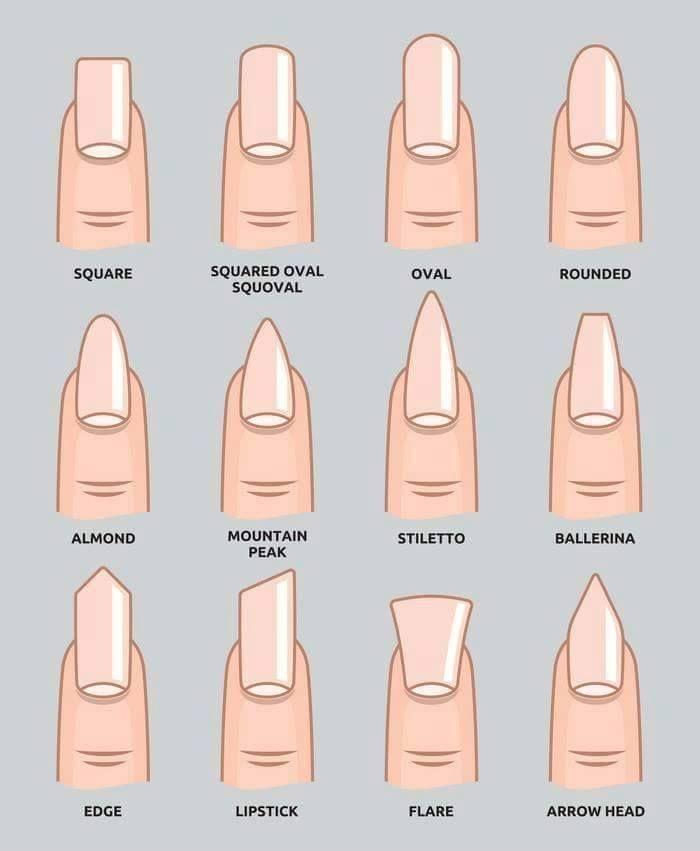 Best 25+ Acrylic nail shapes ideas on Pinterest | Nails ...