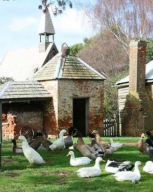 Brickendon Farm, Tasmania, Australia part of the Australian Convicts Unesco designation - harks back to  a time in world history when convicts were used to provide labour to Australian settlers in exchange for food and clothing.