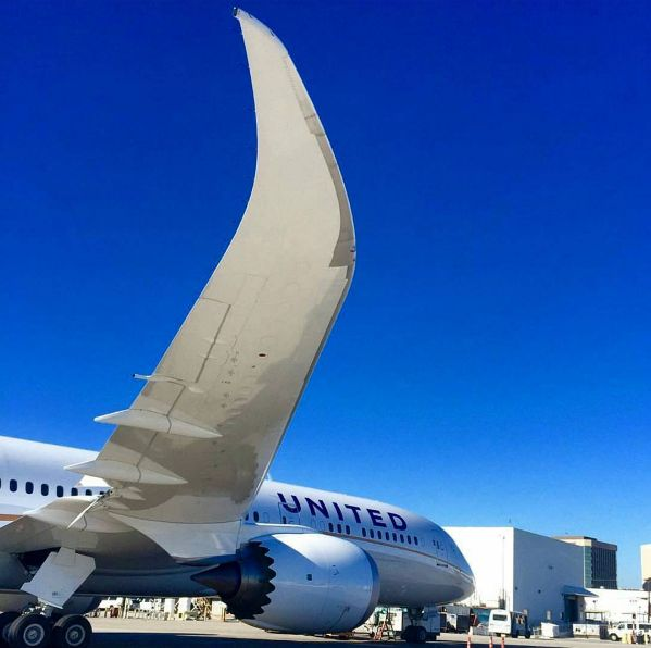 Wings for days! @united Boeing 787 Dreamliner preparing to return to the skies. #AirplanesofLAX [PIC] c: @Jorge_ec89