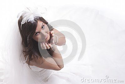Download Isolated Bride Royalty Free Stock Photography for free or as low as 0.15 €. New users enjoy 60% OFF. 22,223,946 high-resolution stock photos and vector illustrations. Image: 31830967