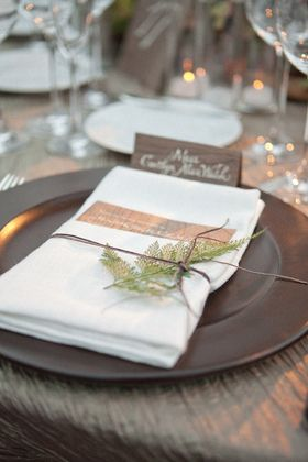 With served dinner, I think we need chargers to define place settings.  A brown or brushed silver would play nicely against the glass and brushed silver lanterns.  Yes?