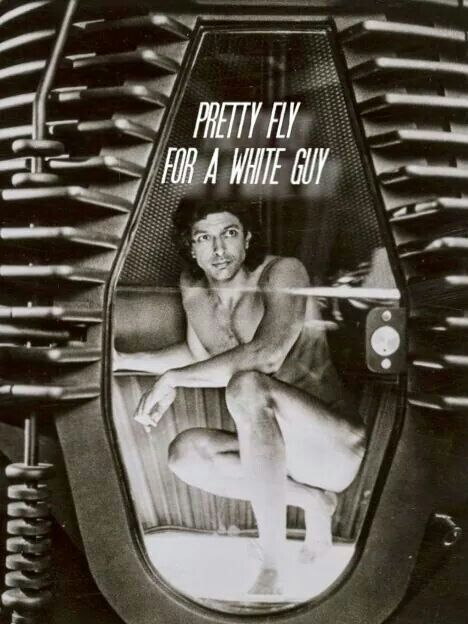 ☆ Jeff Goldblum, pretty fly for a white guy ;)